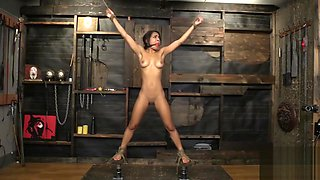 pretty slave trained vibed ballgagged drooling
